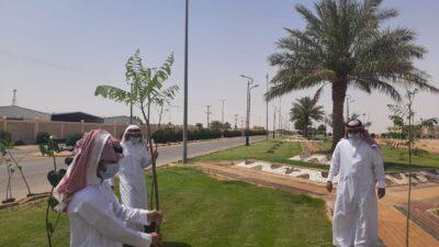 بلدية اللهابه تواصل جهودها بزراعة أشجار الظل والزينة باللهابة والمراكز التابعة