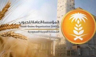 """""""الحبوب"""": صرف الدفعة الأولى لمزارعي القمح بقيمة 94 مليون ريال"""