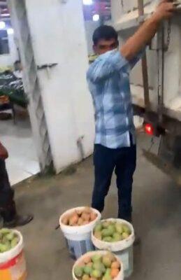 """شاهد.. عمالة تستخدم سيارة نظافة في نقل الخضروات والفواكه بعسير .. و""""الأمانة"""" تتفاعل وتغلقه"""