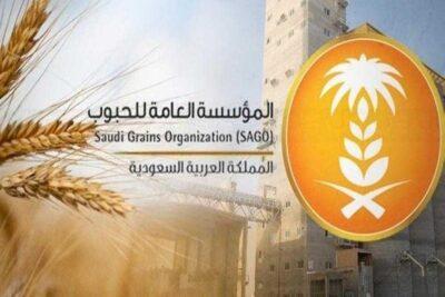 الحبوب تنتهي من ترسية الدفعة الرابعة من القمح المستورد هذا العام