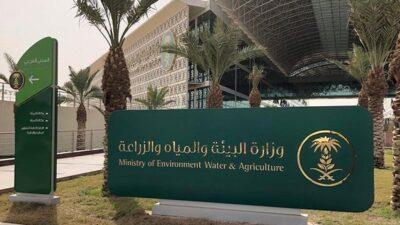 «البيئة والزراعة» تحدد شروط الحصول على إذن استيراد مواشٍ