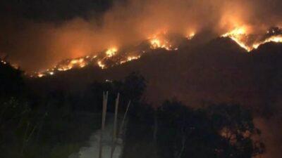 تركيا تعلن السيطرة على 90% من حرائق الغابات