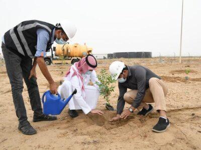"""مياه جازان تزرع ٤٠٠٠ شتلة ضمن مبادرة """" لنجعلها خضراء"""""""