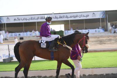 سمو أمير منطقة الباحة يرعى حفل اختتام سباقات الفروسية