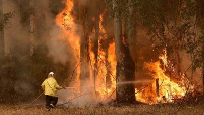 ارتفاع قتلى حرائق الغابات في تركيا إلى ثمانية أشخاص