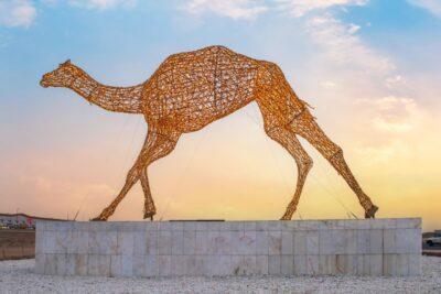 اتحاد الهجن يهدي الطائف أكبر مجسم في العالم يحوي 51 ألف مصباح بطول 10 أمتار