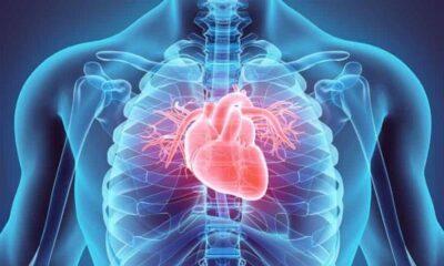منها نزيف اللثة.. 8 علامات تحذيرية تكشف عن إصابة قلبية محتملة
