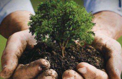 المملكة تستضيف منتدى مبادرة السعودية الخضراء وقمة مبادرة الشرق الأوسط الأخضر.. الشهر المقبل
