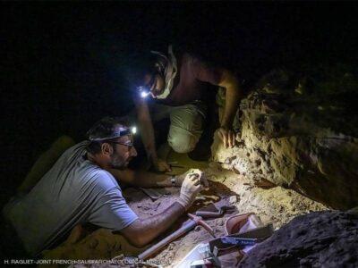 """دراسة توثق """"موقع أثري"""" عمره 8 آلاف عام بالسعودية"""