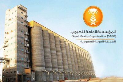 بدء صرف مستحقات الدفعة الـ12 لمزارعي القمح المحلي