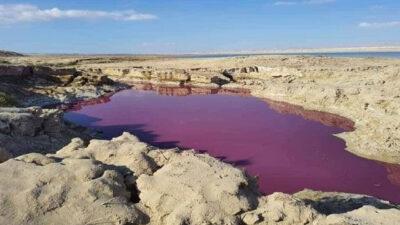 الأردن يكشف عن أسباب تلون بركة مياه باللون الأحمر