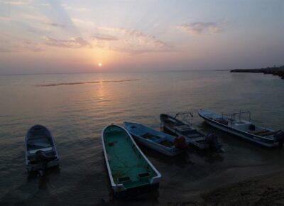 تسجيل جزر فرسان في اليونسكو.. ووزير البيئة يعلق