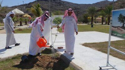 """محافظ غامد الزناد """"بن رقوش """" يدشن مبادرتي """"مساجدنا خضراء"""" و """"لنجعلها خضراء """""""