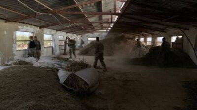 الجيش اللبناني يضبط 10 أطنان من الحشيش