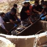 """بالصور.. آل قنيفذ من الوذانين من عتيبة تقيم احتفالاتها بـ""""عيد الفطر المبارك"""""""