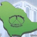 """""""نزاهة"""" لـ""""الصحة"""": وضع المنشآت الصحية لا يليق بالسعودية"""