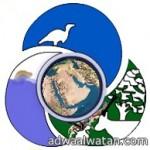 انطلاق الفعاليات المصاحبة لرالي حائل الدولي 2013م