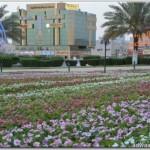 الدكتور الحسيناوي يباشر عمله مديراً المستشفى الملك خالد بالمجمعة