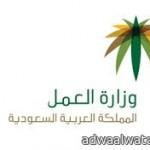 افتتاح طريق الهدا وإغلاقه مرة أخرى في شهر محرم للعام المقبل