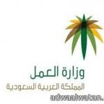 وزارة التربية تعلن انطلاقة الأندية الموسمية في المناطق والمحافظات