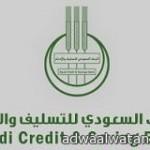 الدكتور عبدالله الحمود نائباً لرئيس  هيئة الاذاعة والتلفزيون